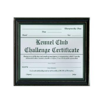 Challenge Certificate Frame